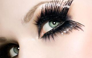Сколько ресниц растет на глазах у человека