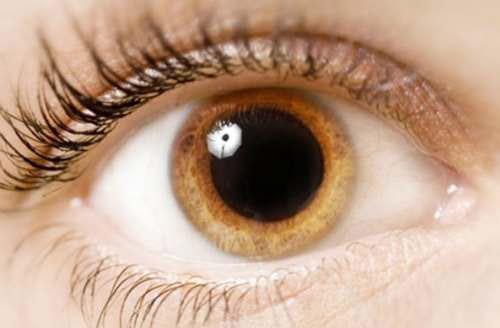 проявление филяриоза глаз
